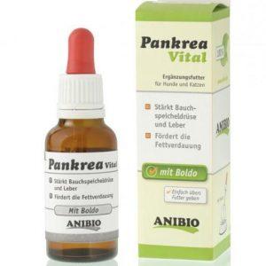 Pankrea Vital de Anibio