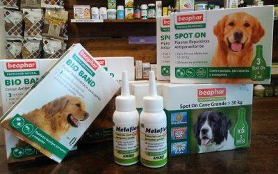 Antiparasitarios naturales que no ponen en peligro a tu mascota