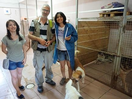 """""""En Georgia no se acata la declaración de la ONU sobre los derechos de los animales"""", Teimuraz Tsikoridze, fundador de la Soc. Georgiana para la Protección de los Animales"""