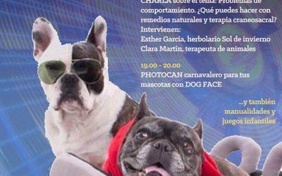 """""""Problemas de comportamiento en tus mascotas: ¿qué puedes hacer con remedios naturales y terapia craneosacral?"""""""