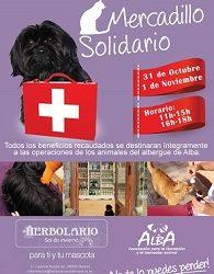 Mercadillo solidario en beneficio de Alba