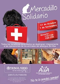 Mercadillo solidario en beneficio de Alba
