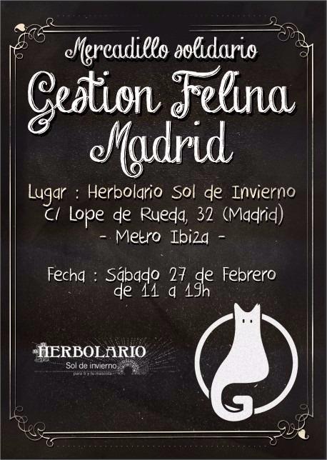 Mercadillo solidario de Gestión Felina Madrid