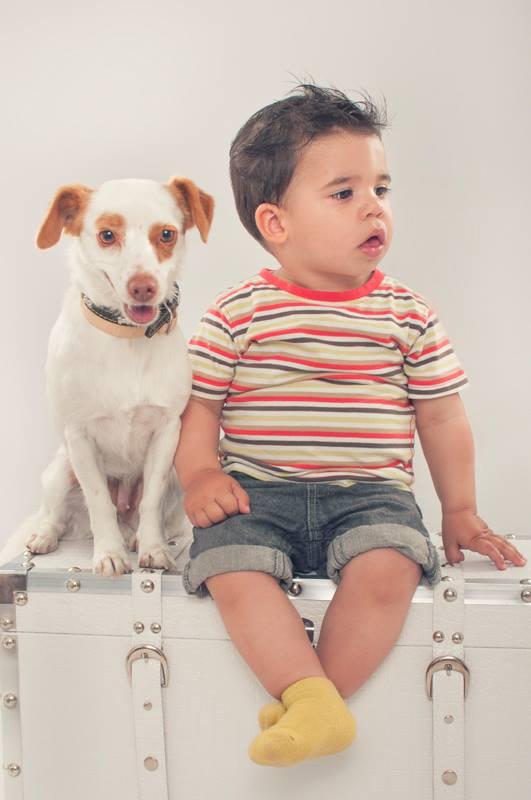 """""""Pautas para relación entre niños y perros"""""""