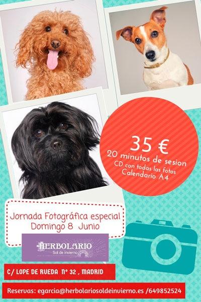 Jornada fotográfica para mascotas