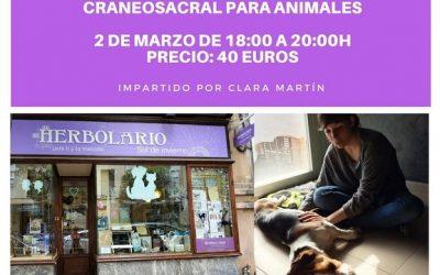 Taller de terapia craneosacral para animales