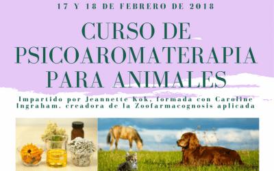 Psicoaromaterapia para animales