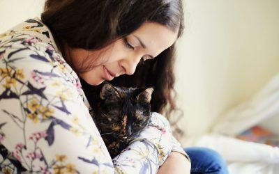 «Mi gato se hace pis o caca fuera de su arenero», Amaya Espíndola, veterinaria especializada en gatos