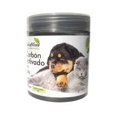 intoxicación de perros y gatos