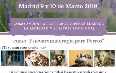 Curso «Psicoaromaterapia para perros»