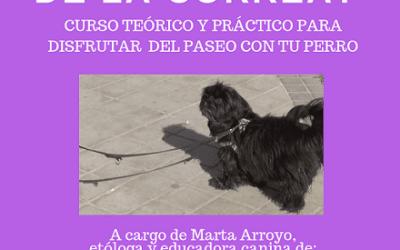 Taller teórico y práctico: «¿Tu perro tira de la correa?»