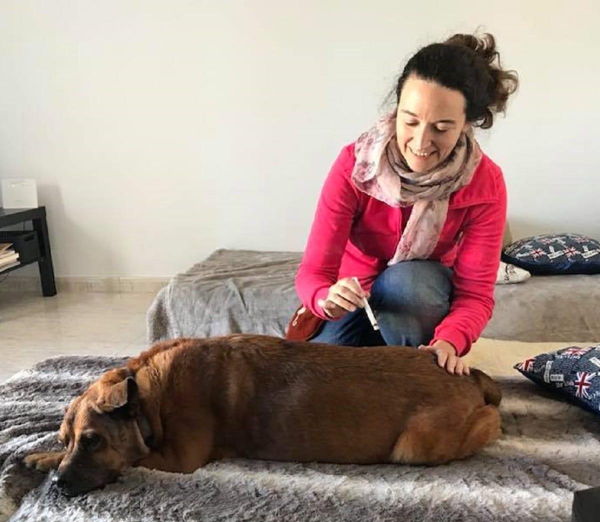 """""""El amigo animal con quien vivimos no es un humano pequeño"""", Mercè Giménez, fundadora de Vida Natural Animal"""