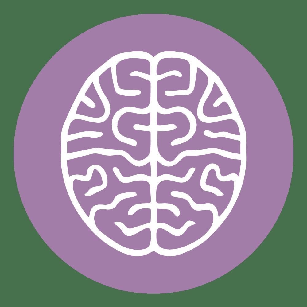 cbd-epilepsia-perros