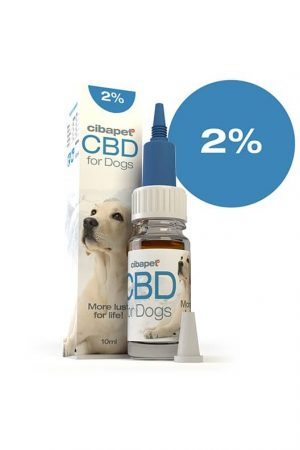 cbd-para-perros-2
