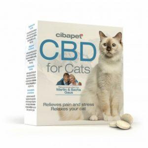 CBD en pastillas para gatos