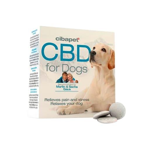 cbd-pastillas-perros