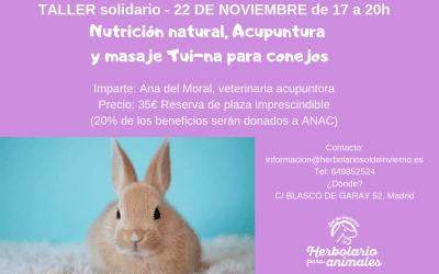 Taller solidario de conejos