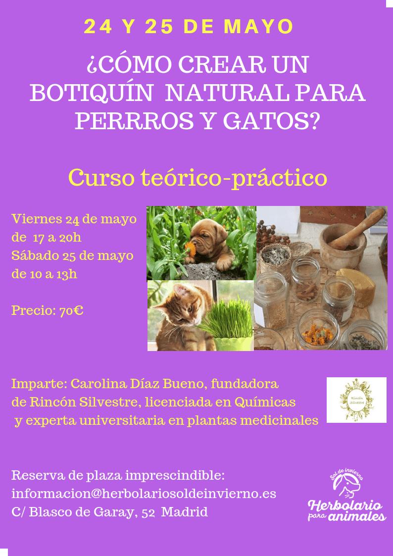 ¿Cómo crear un botiquín natural para perros y gatos?