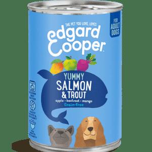 salmon y trucha