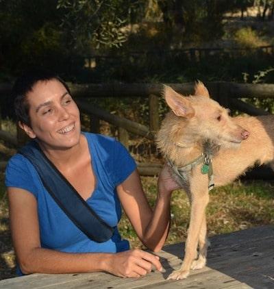 etologia-canina-y-felina