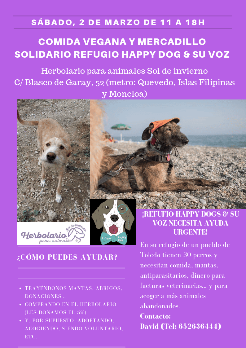 Comida vegana y mercadillo solidario del refugio Happy dog & su voz
