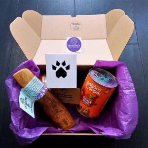 Pack regalos eco para perros
