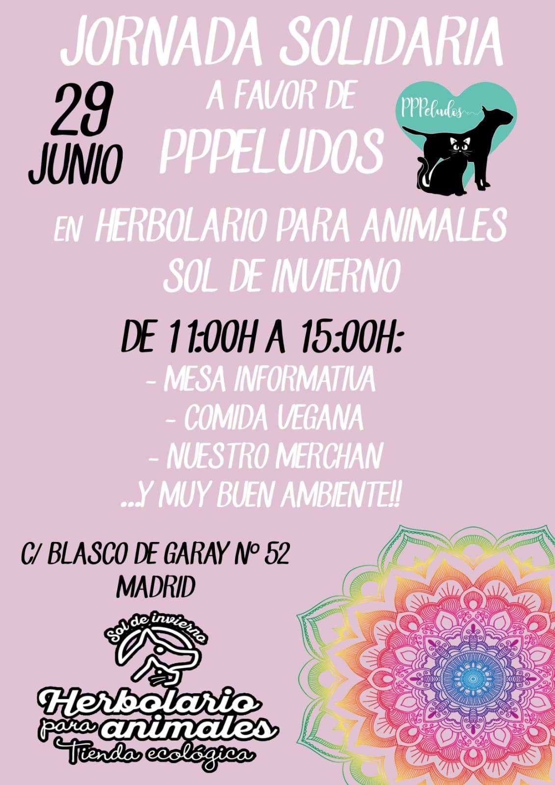 Jornada solidaria a favor de PPPeludos